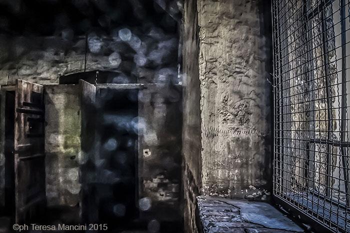 Shoah la percezione e lo sguardo del contemporaneo nella fotografia e nella grafica d'arte Teresa Mancini